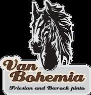 Van Bohemia – Friesian & Barock Pinto koně