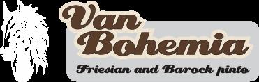 Van Bohemia – Friesian & Barock Pinto horses